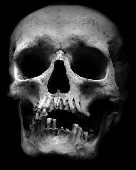 To a Skull